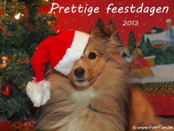 Beste wensen en een gelukkig 2013!